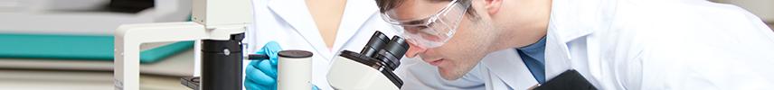 Mestrados Bioética