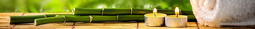 Magíster Medicina Naturista y Salud Natural