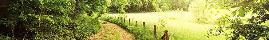 Gestion et Conservation des Espaces Naturels