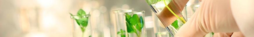 Bioética y Biojurídica